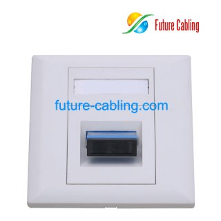 SC Duplex Fiber Optic Faceplate, 1 Port