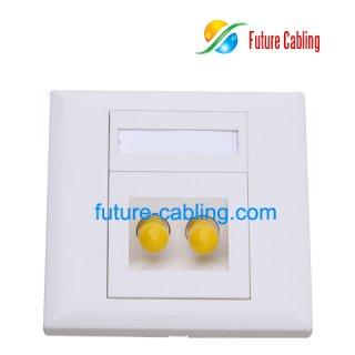 ST Fiber Optic Faceplate, 2 Port, Angled Type