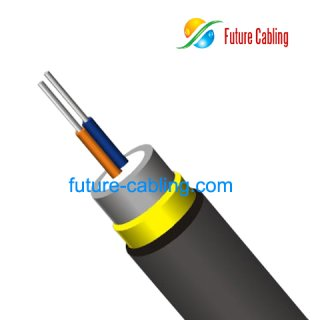 Duplex Round Far Transmission Cable III