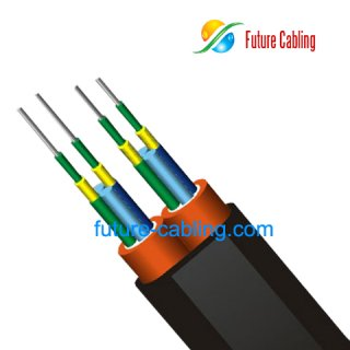 4-fiber Parallel Far Transmission Cable