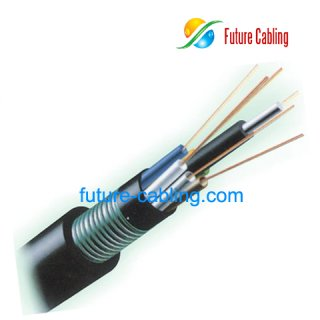 Armored and Double Sheathed Outdoor Fiber Cable--GYTY53