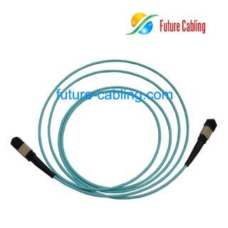10 Gigabit MPO Trunk Cable, Round, Multimode OM3, XX Meter