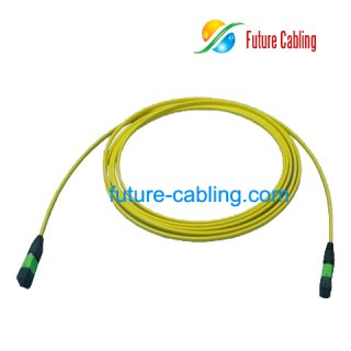 MPO Trunk Cable, Flat, Singlemode 9/125um, XX Meter