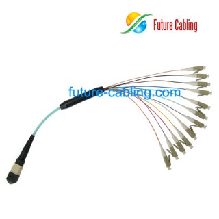 MPO-LC Break Out Cable, Round, Multimode, 10 Gigabit OM3, XX Meter